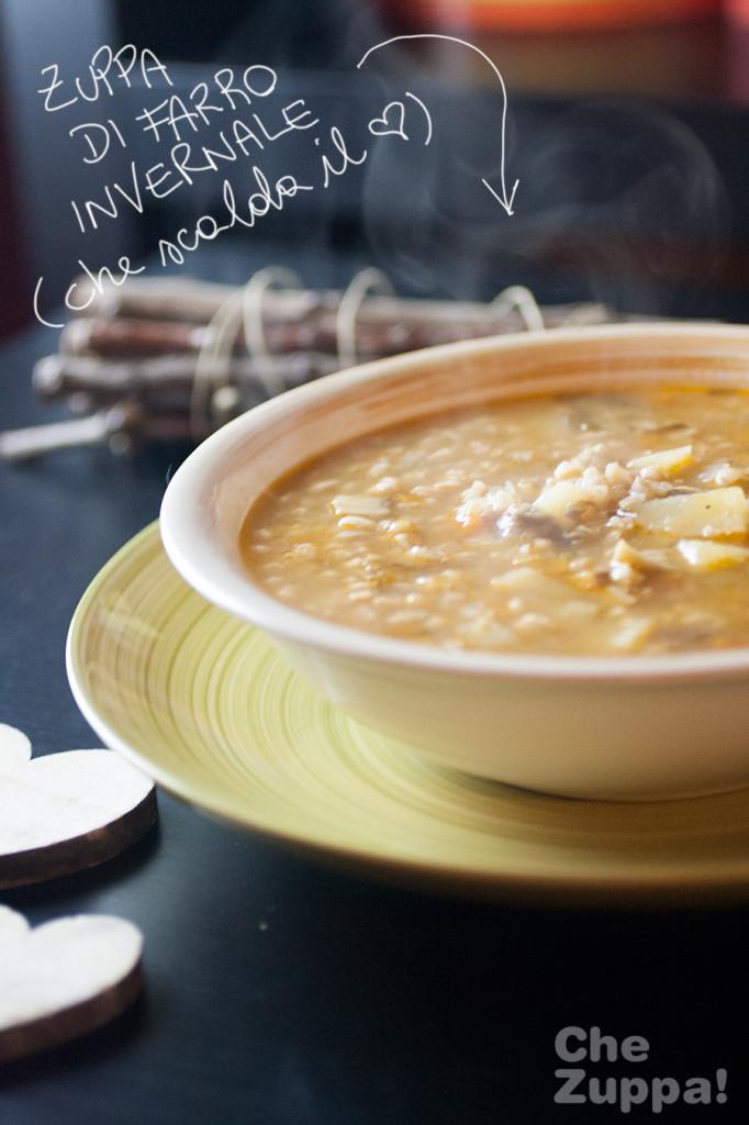 zuppa-di-farro-invernale03