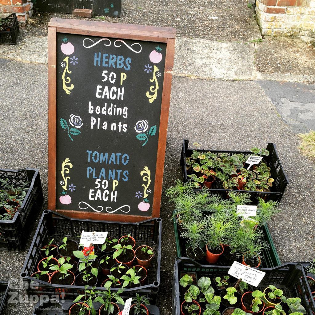 Suffolk uk, la vendita di piante sulle strade