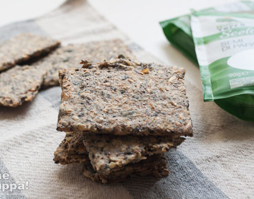 Crackers integrali ai semi Nuova Terra